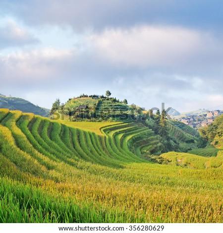 Famous rice terraces, Longi, China - stock photo