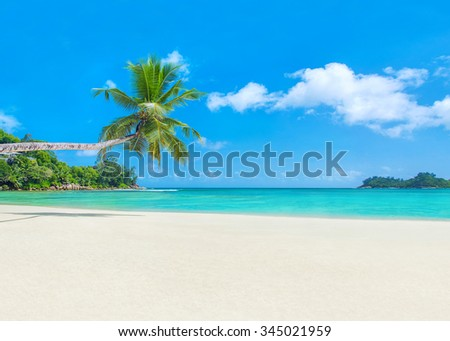 Famous tropical coral sandy palm beach Baie Lazare, Seychelles, Mahe island, Indian ocean, scenic natural background - stock photo