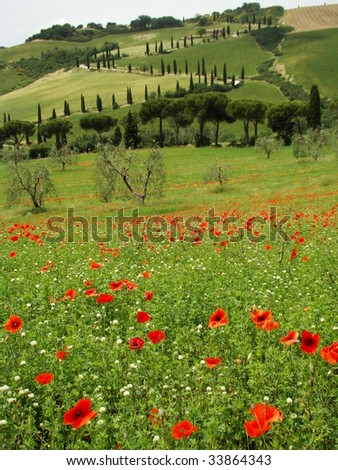 famous tuscan scenery, La Foce in The Val d Orcia, UNESCO World Heritage site, Italy - stock photo