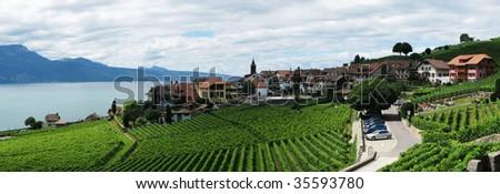 Famous vineyards in Lavaux region against Geneva lake. Switzerland - stock photo