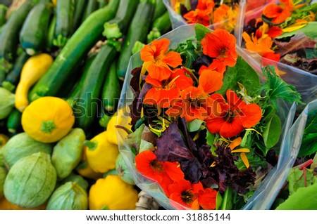 Nasturtium flowers Stock Photos, Images, & Pictures | Shutterstock
