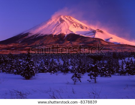 Fanned by the sudden gusts of wind at Mt,fuji - stock photo