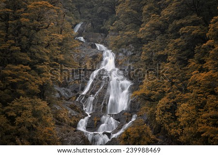 Fantail Falls, near Haast, South Island, New Zealand - stock photo