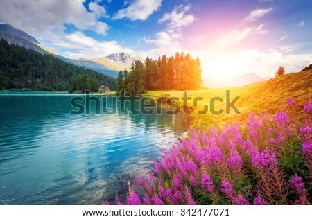 Fantastic azure alpine lake Champfer. Unusual and picturesque scene. Location famous resort Silvaplana village, district of Maloja in the Swiss canton of Graubunden, Alps. Europe. Beauty world. - stock photo