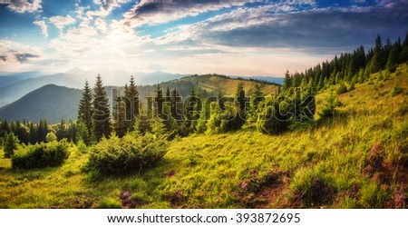 Fantastic day in a beautiful place in sunlight. Dramatic and picturesque morning scene. Location: Carpathian National Park, Ukraine, Europe. Artistic picture. Beauty world. Soft filter effect. - stock photo