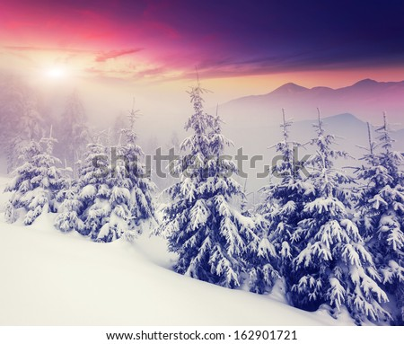 Fantastic evening winter landscape. Dramatic overcast sky. Creative collage. Beauty world. - stock photo