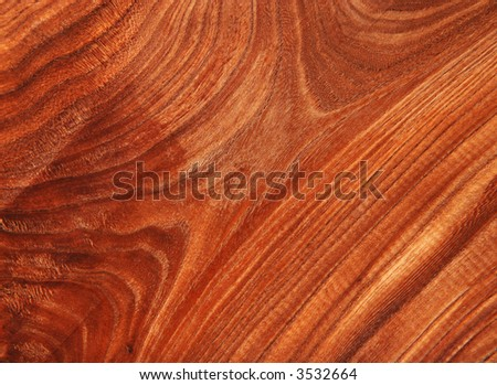Fantastic Natural Wood Texture Background - stock photo