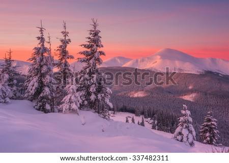 Fantastic orange evening landscape glowing by sunlight. Dramatic wintry scene with snowy trees. Kukul ridge, Carpathians, Ukraine, Europe. Merry Christmas! - stock photo