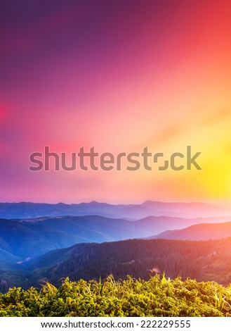 Fantastic sunny hills glowing by sunlight. Dramatic morning scene. Carpathian, Ukraine, Europe. Beauty world. - stock photo