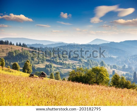Fantastic sunny hills under morning cloudy sky. Dramatic overcast sky. Carpathian, Ukraine, Europe. Beauty world.