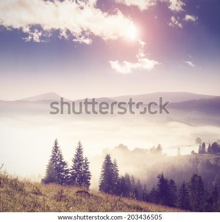 Fantastic sunny hills under morning sky. Dramatic scenery. Carpathian, Ukraine, Europe. Beauty world. Retro filtered. Instagram toning effect. - stock photo