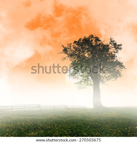 Fantastic sunrise in remote rural areas - stock photo