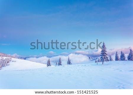 Fantastic winter landscape. Blue sky. Carpathian, Ukraine, Europe. Beauty world.  - stock photo