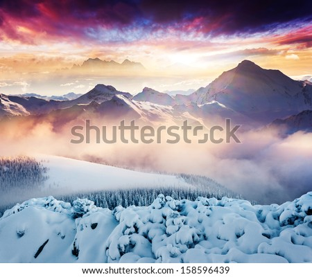 Fantastic winter landscape. Colorful overcast sky. Creative collage. Beauty world. - stock photo
