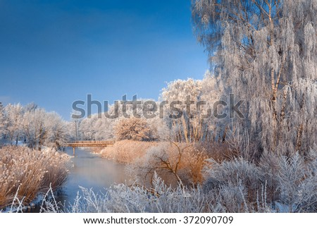 fantastic winter landscape. Frost on the branch, snow in the morning in the woods near the river, frosty fairy forest. winter scene. Beautiful world. Europe. Ukraine - stock photo