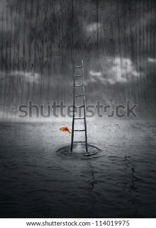 Fantasy background with a wooden ladder out of the water and a colored fish that jump out in a dramatic environment in black and white - stock photo