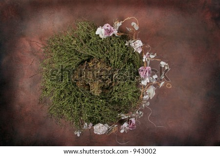 Fantasy Bird Nest Photographer Studio Set (Insert Isolated Client)