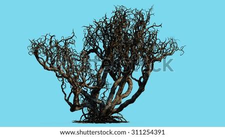 fantasy death tree  - stock photo