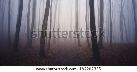 fantasy forest with man walking on a path - stock photo