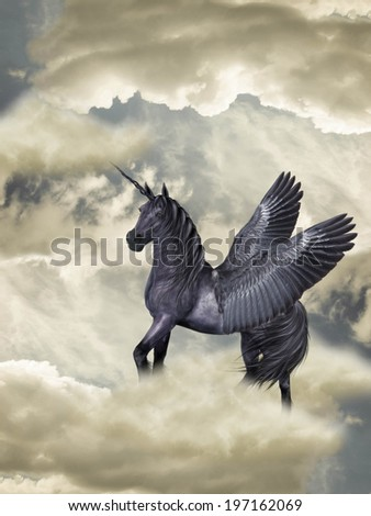 Fantasy Horse black pegasus in the heaven  - stock photo