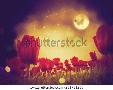 Fantasy illustration of red tulip flowers at night time. - stock photo