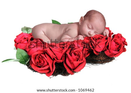 Fantasy Infant in Bed of Roses - stock photo