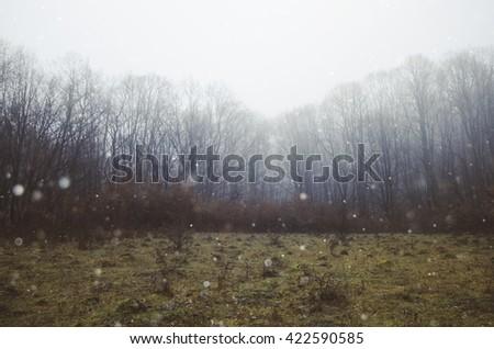 fantasy landscape fog background - stock photo