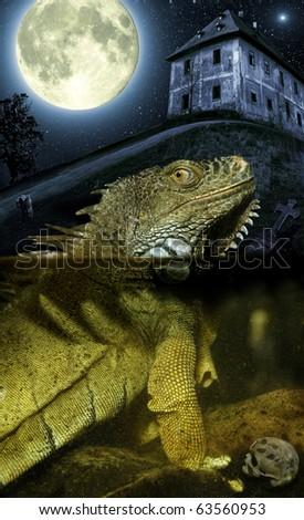 Fantasy night scene with big lizard and full moon - stock photo