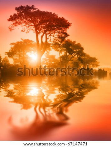 Fantasy scenic trees over lake reflecting in water at sunset. Soft focus. - stock photo