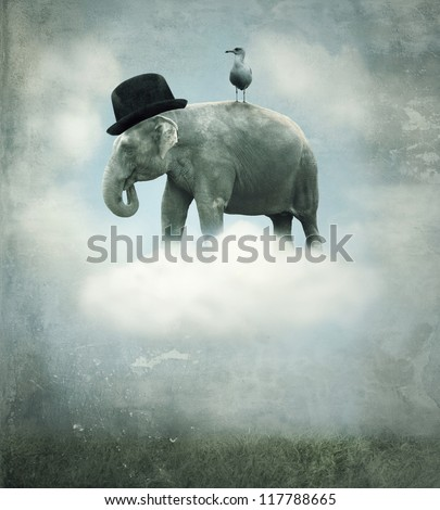 Fantasy surrealistic background with an elephant with a hat and a gull that flying on a cloud in the sky - stock photo