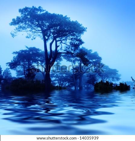 Fantasy trees at foggy morning. Soft focus. - stock photo