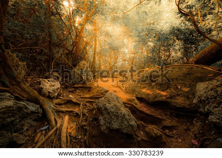 Fantasy tropical jungle forest in surreal colors. Concept landscape for mysterious background - stock photo