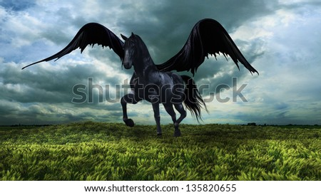 Fantasy winged black horse