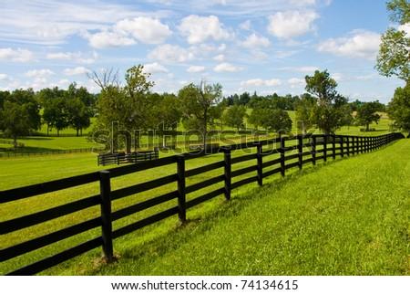 farm - stock photo