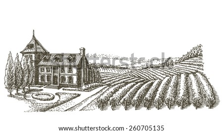 farm, a vineyard, on a white background. sketch - stock photo