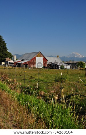 Farm and red barn with Mount Rainier in the background.
