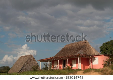 Farm and tobacco drying shed in a cuban countryside landscape