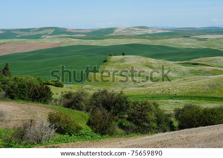Farm and wheat fields in palouse area, washington, usa
