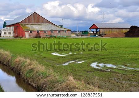 Farm barn and field - stock photo