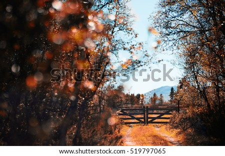 Farm entrance gate autumn background