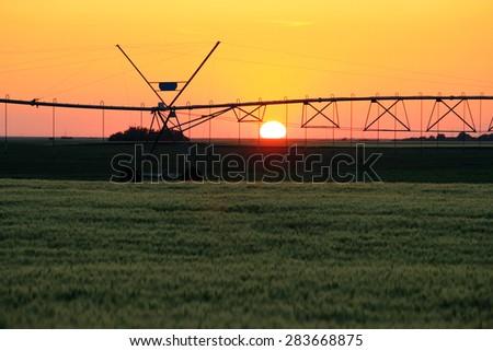 Farm irrigation sprinkling fields at sunset - stock photo