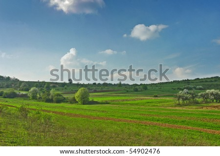 Farm land with blue sky and green spring grass and meadows