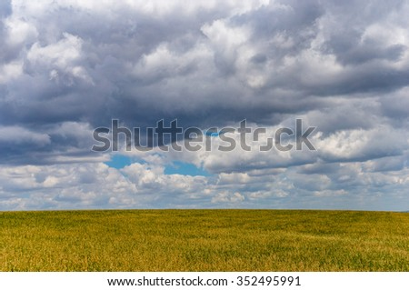 Farm landscape. Picturesque rural cattle farm. Farm pasture on summer day with copy space - stock photo