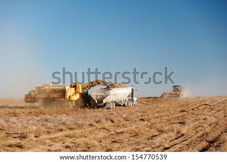 Farm machinery harvesting potatoes in Idaho - stock photo