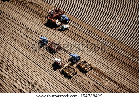 Farm machinery harvesting potatoes in Idaho - stock photo