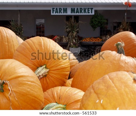 farm market - stock photo