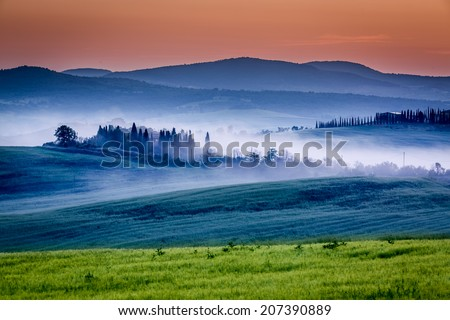 Farm of olive groves and vineyards in foggy sunrise - stock photo