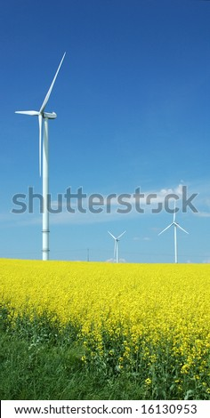 farm of windturbines close to rapeseed field France