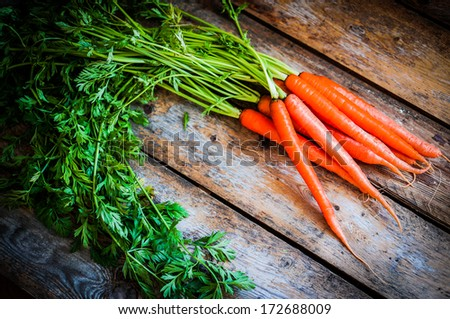 Farm raised organic carrots on wooden background - stock photo