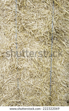Farm stacked straw, nature and agriculture - stock photo